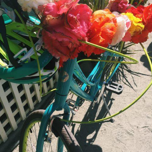 Happy Bike | Begonia Festival Capitola Santa Cruz
