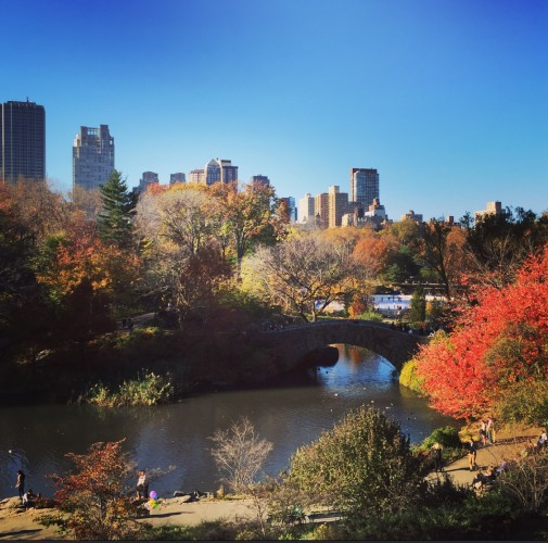 Centeral Park in Fall | NYC Places to Visit