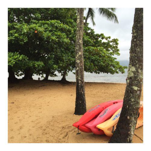 Let's Shop Kauai: Ask Suzanne Bell