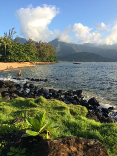 Princeville Kauai: Ask Suzanne Bell