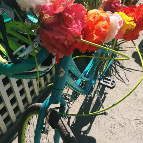 Happy Bike | Begonia Festival Capitola Santa Cruz
