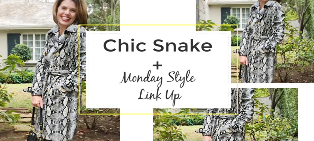 2019 Trends To Watch: Chic Snake + Stylish Monday Linkup ...