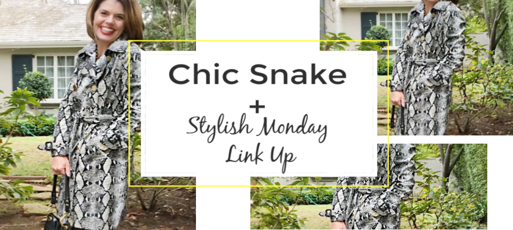 2019 Trends To Watch: Chic Snake + Stylish Monday Linkup (NEW!)